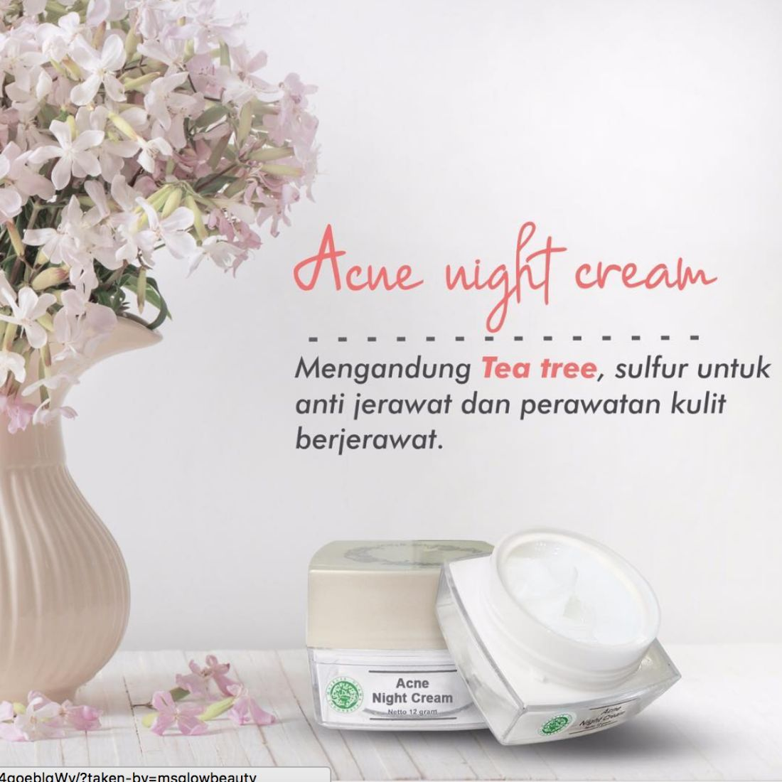 Acne Night Cream MS Glow